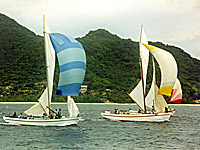 Local yacht race 1993